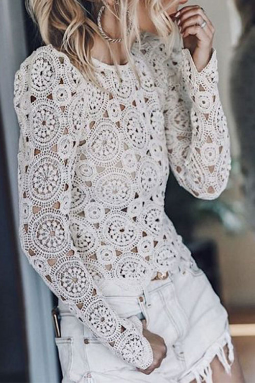 Round Collar See-through Lace Shirt