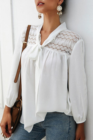 Chiffon Long Sleeve Solid Blouse