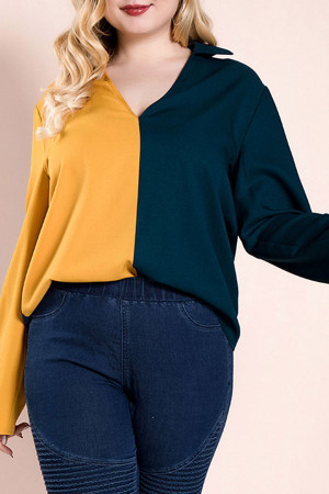 Plus Size Color Block Top