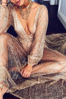 Deep V-Neck See-thru Dress