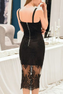 Embroidered Mesh Bodycon Dress