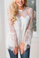 Solid Lace Collar Top