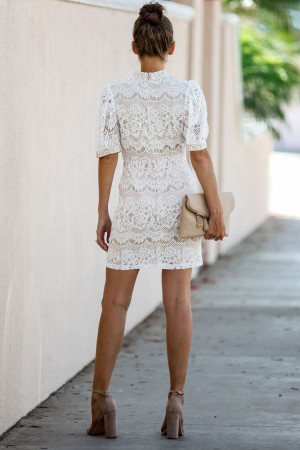 High Neck Lace Slim Dress