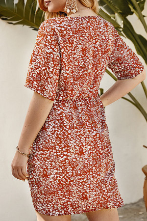 Floral Print V-Neck Dress