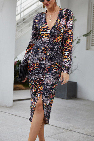Leopard Print Long Sleeves Dress