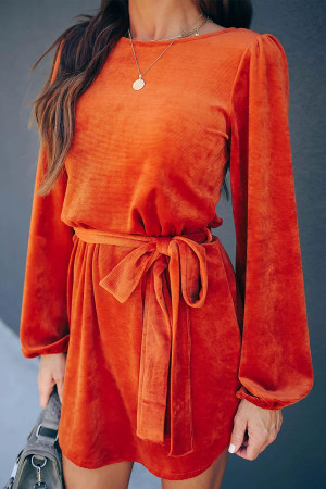 Solid Casual Belted Dress